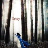 Review: Stray, Elissa Sussman