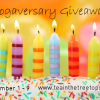 Our Second Blogaversary Giveaway