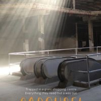 Review: Carousel, Brendan Ritchie